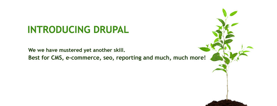 Introducing Drupal Development